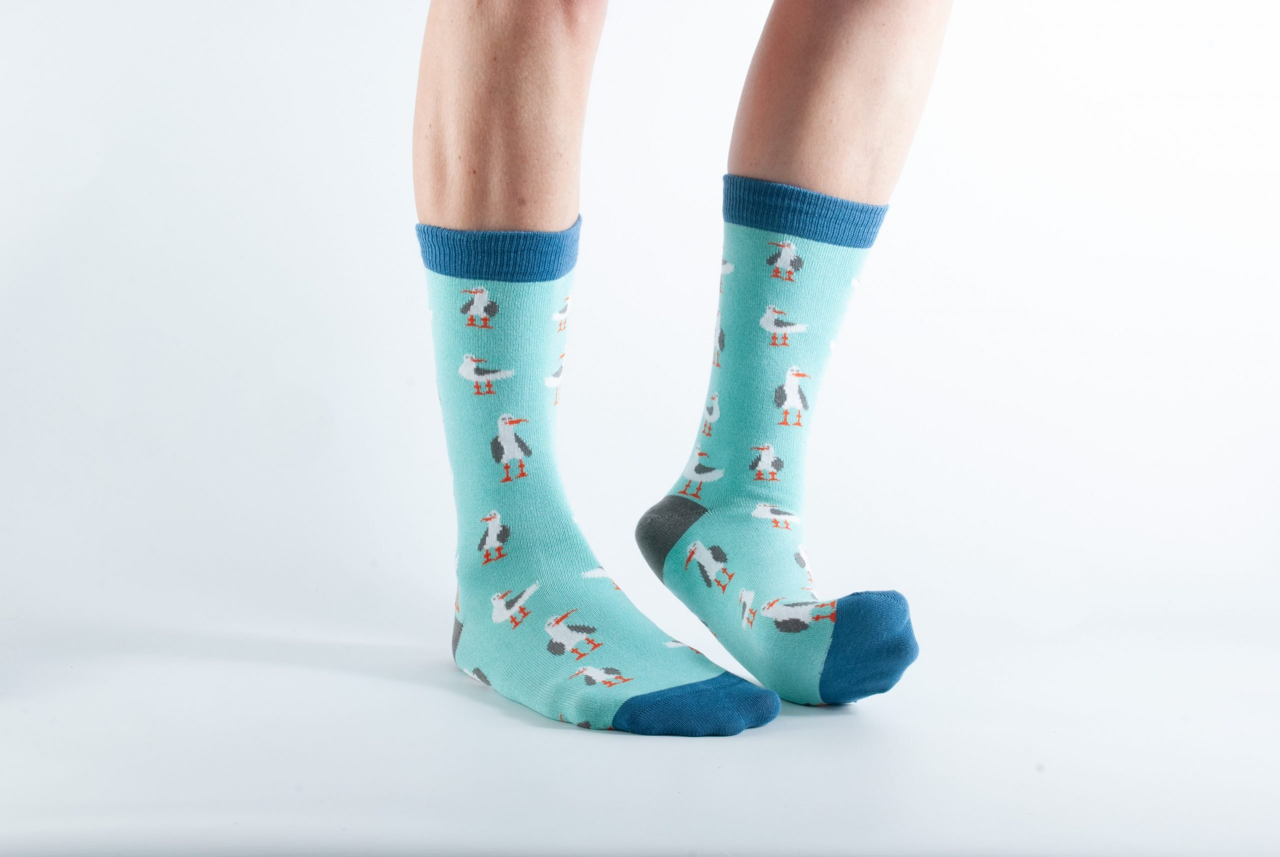 Womens Seagull bamboo socks - mint and blue