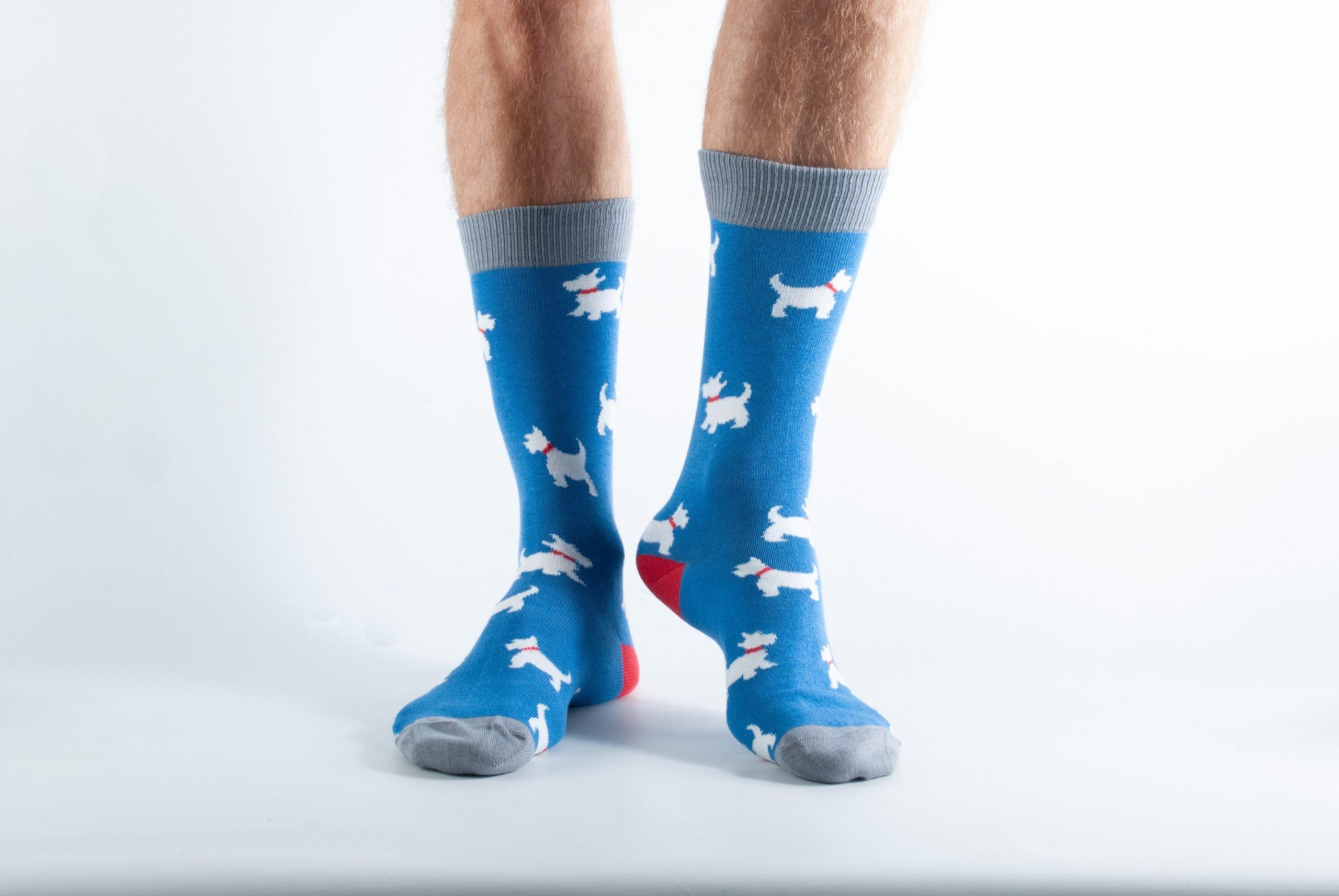 Mens Scottie dog bamboo socks - grey and blue