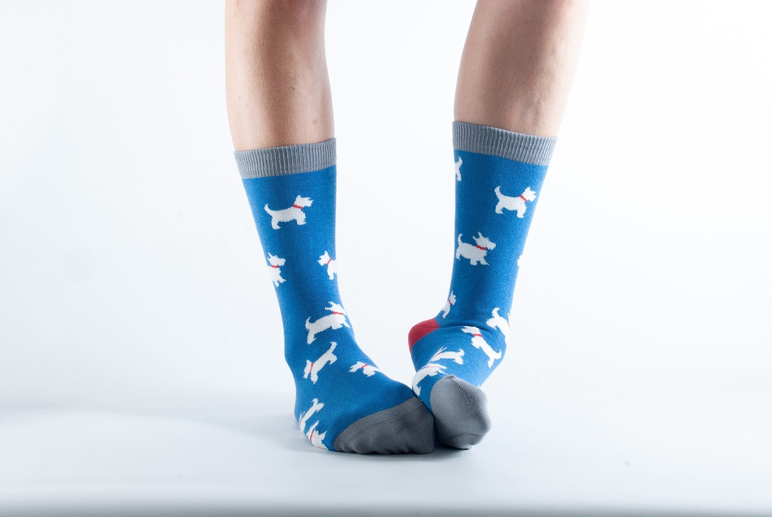 Womens Scottie dog bamboo socks - blue and grey